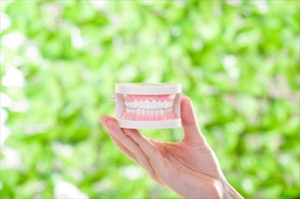 入れ歯の悪いイメージを塗り替える!近年の入れ歯の進歩を解説